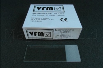 Microscope Frosted Slides - Pack of 100