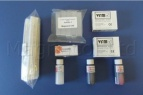 Microscope Slide Starter Kit